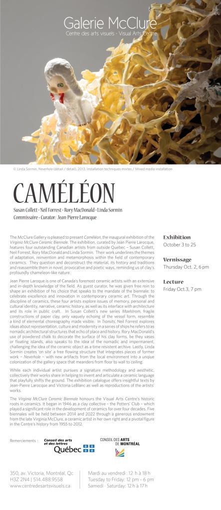 cameleon poster english